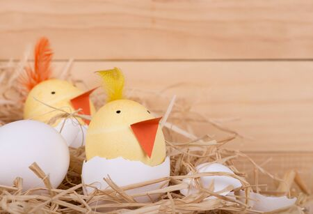 Two Easter eggs decorated as hatching chicks
