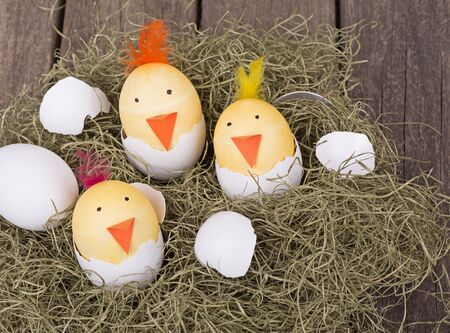 Three Easter eggs decorated as hatching chicks