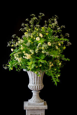 Old vintage stone urn with early spring wild plants and flowers making a lovely display isolated on black background