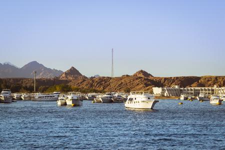 sharm: SHARM EL SHEIKH, EGYPT - FEBRUARY 25, 2014: Marina: Pleasure sightseeing boats on the Parking lot of boat Park, boat trip for tourists, Sharm El Sheikh, Egypt