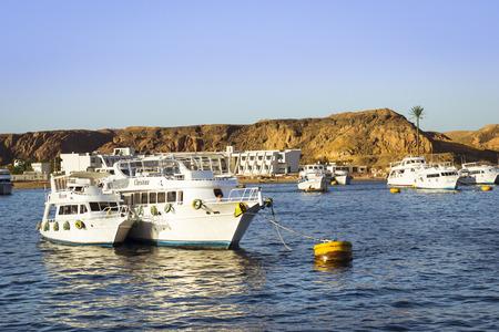 el sheikh: SHARM EL SHEIKH, EGYPT - FEBRUARY 25, 2014: Marina: Pleasure sightseeing boats on the Parking lot of boat Park, boat trip for tourists, Sharm El Sheikh, Egypt
