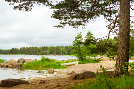 suomi: White rowing boat stands on a sandy shore in a quiet Bay of the Finnish Gulf. Area for summer camping in the woods. Hamina, Finland, Suomi Stock Photo