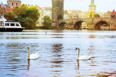 hiss: Swans on the Vltava river near the Charles bridge, old town, Prague, Czech Republic. Photo stylized illustration