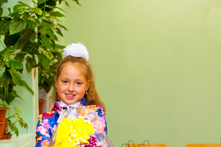 first year student: Little first-grader, girl-student in school on knowledge day - 1. September. Student of elementary school in uniform with bows posing in classroom. Education in Russia