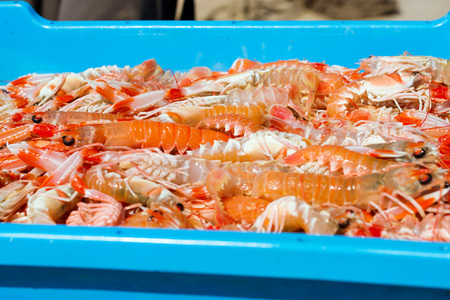 Blue plastic containers with catch of sea shrimps, ocean prawns delicacies. Fish auction for wholesalers and restaurants. Blanes, Spain, Costa Brava. Industrial catch of fresh seafood
