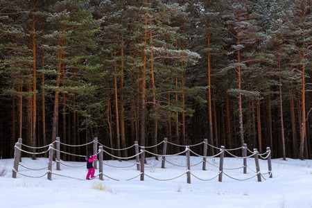 Winter day on snowy shore of Narva Bay. Snow on ice of frozen Finnish gulf. Narva-Joesuu resort town in Estonia in Ida-Virumaa. Severe Northern winter and snowy weather. Girl in pine forest, pinewood