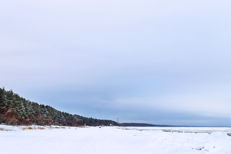 Winter day on snowy shore of Narva Bay. Snow on ice of frozen Finnish gulf. Narva-Joesuu resort town in Estonia in Ida-Virumaa. Severe Northern winter and snowy weather. Pine forest, pinewood