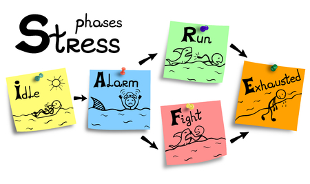 Illustration of stress mechanism in stages from beginning to exhaustion.