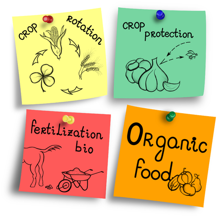 Essentials of organic food production on a colorful notes. 免版税图像