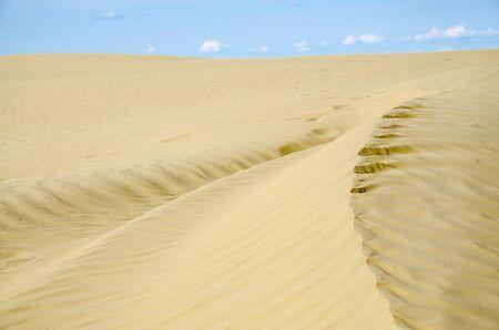 sandhills: Sand dunes