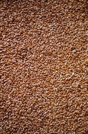 Healthy Flax Seed Background Banco de Imagens - 26467449