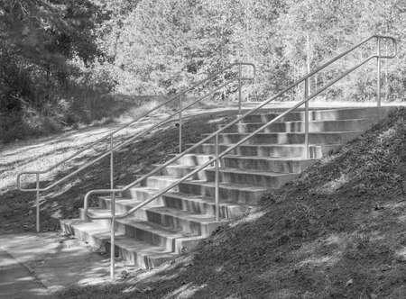 Black White Stairs Park Path