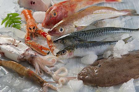 calamar: Pescado fresco de los peces y otros mariscos Foto de archivo