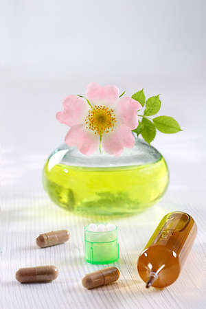 alternative medicine: Briar-medicinal Plant