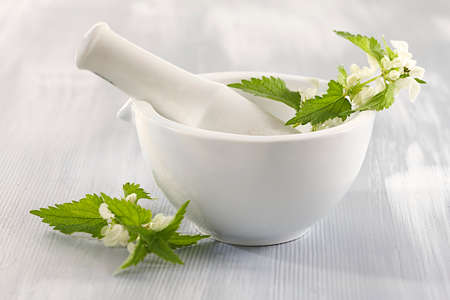 White nettle in ceramic mortar-plant medicinal  photo