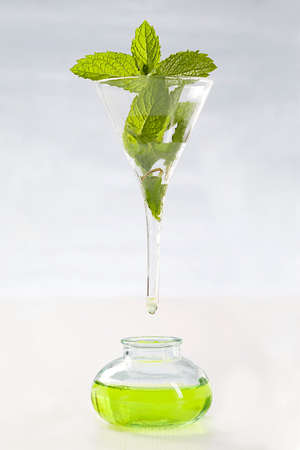 symbol picture of extracting the essential oil- Peppermint essential oil  photo