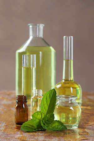 essence: Natural cosmetics - Essence with fresh mint leaves