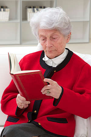 grey haired: grey haired senior woman  relaxing at home reading a book