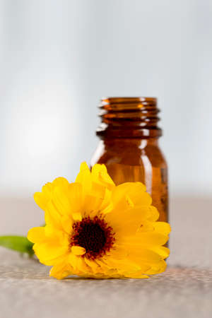 Marigold essential oil photo
