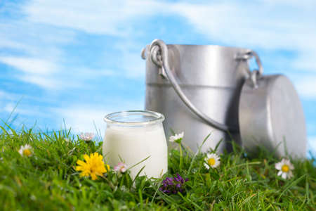Yogurt and Old style milk jug on the grass with cflowers  the sky with clouds on the background. Stock Photo