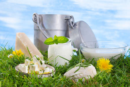 sliced cheese: Dairy Products,  Includes: Milk, Various Types of Cheese, Butter, Ricotta, Yogurt and Old style milk jug Stock Photo