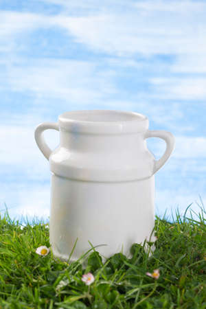ceramic bottle: Ceramic  Old style milk jug on the grass with cflowers  the sky with clouds on the background.