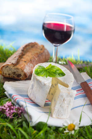 glass of wine, cheese and bread, laid in the grass, picnic stage. photo