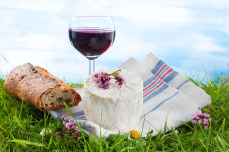 willingness: glass of wine, cheese and bread, laid in the grass, picnic stage. Stock Photo