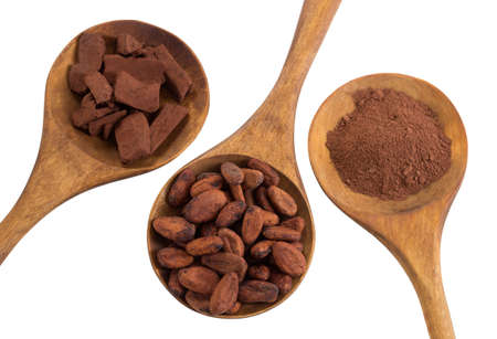 wooden spoon: cacao bean and cacao powder in wooden spoon