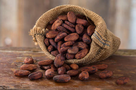 hessian bag: cacao bean in hessian bag Stock Photo