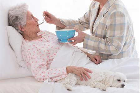 senior eating: elderlycare  feeding an elderly woman atretirement house, or home