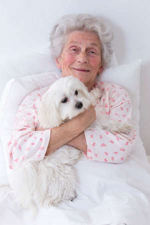 pet therapy: Pet Therapy Dog Visiting Senior Female Patient Inretirement home