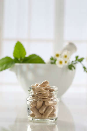 botanical remedy: Alternative health care fresh herbal ,dry and herbal capsule with mortar Stock Photo