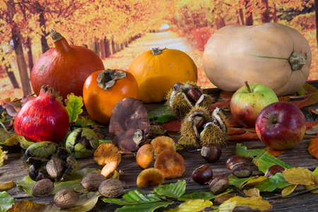grapes and mushrooms: Fall fruit and vegetables on wood.