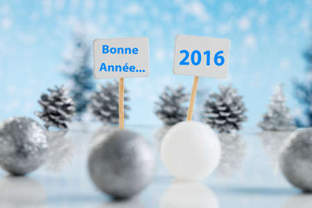 bonne: Bonne Ann�e in Frech language