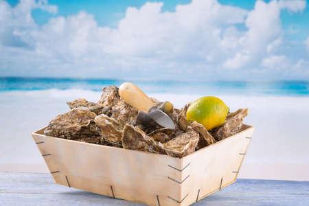 ostra: ostras frescas de costa de Normand�a Foto de archivo