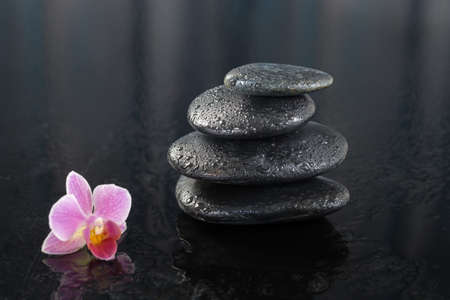 hot stones: spa concept orchid and black hot stones