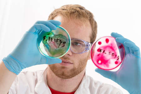 infectious: Lab coat protected life science researcher observing potentially infectious cells in petri dish Stock Photo