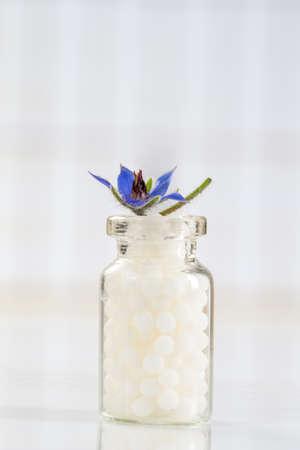 globules: Borage Bottles of homeopathy globules