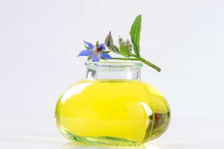 essential oil of natural  Borage Standard-Bild
