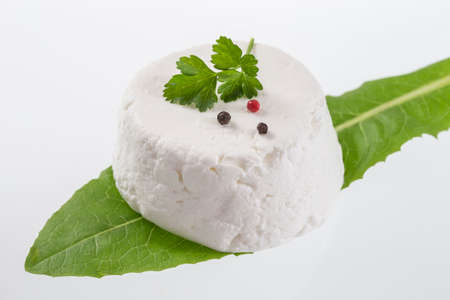 dung: goat cheese on white background with fresh herbs