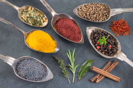 4 of a kind: metal spoons with various ground spices and herbs Stock Photo