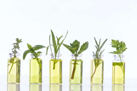 essential oil bottle with herbs basil flower, basil flower,rosemary,oregano, sage,parsley ,thyme and mint Stockfoto