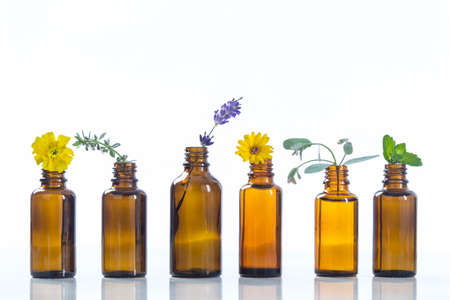 essential oils and medical flowers herbs on white Foto de archivo