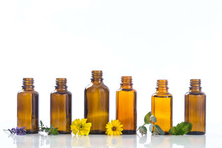 essential oils and medical flowers herbs on white Standard-Bild