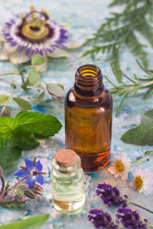 valerian plant: Herb leaf and flower selection , peppermint, sage, thyme, lavender and lemon balm with an aromatherapy essential oil glass dropper bottle .
