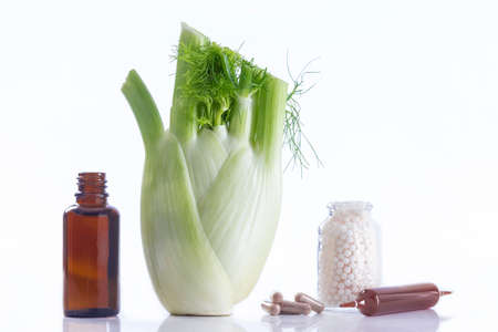 foeniculum vulgare: Declination of a fennel plant part healing herbal medicine Stock Photo