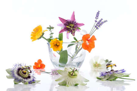 natural therapy: Natural herb and flower selection used in herbal medicine Stock Photo