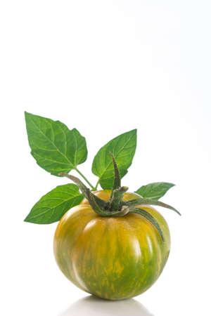 FOODIES: Heirloom Green Zebra Tomato on White background Stock Photo