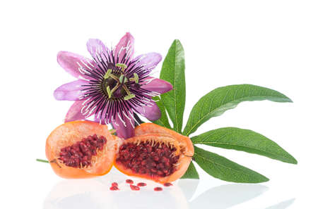 Flower and fruit Passionflower on a white background